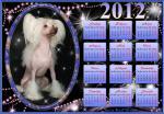 Календарь с Юляшкой на 2012 год